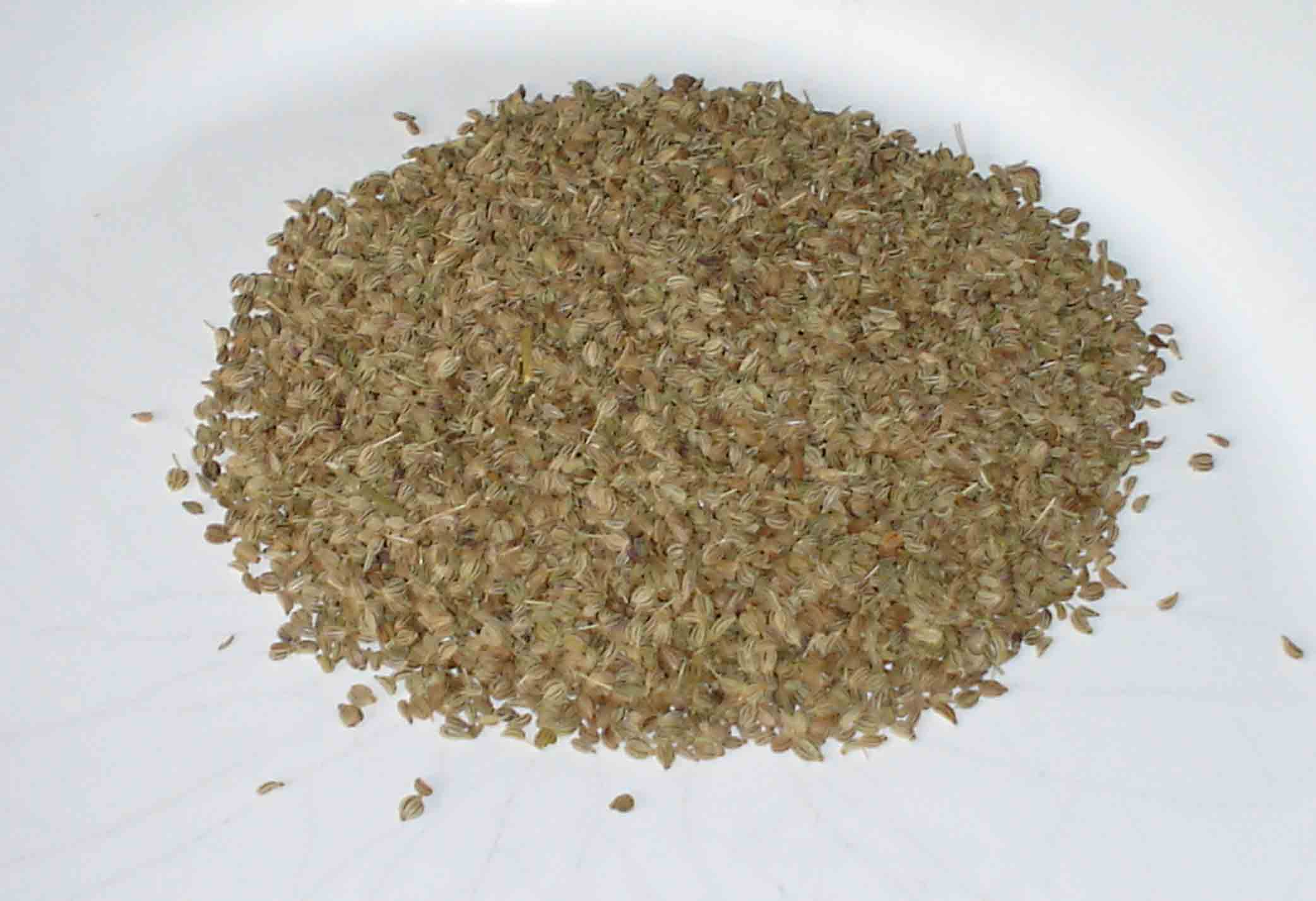 19 Amazing Benefits Of Fennel Seeds For Skin, Hair, And Health pics