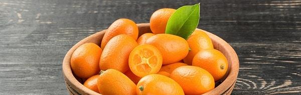 Quince Kumquat.Indian Link