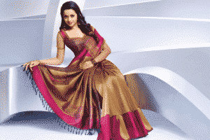 Kanjeevaram silk saree- Tamil Nadu