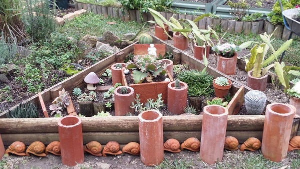 Old terracotta pipes, sandpit timbers and clay snails create a cactus display