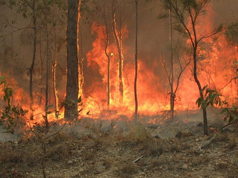 2019-20 bushfires queensland