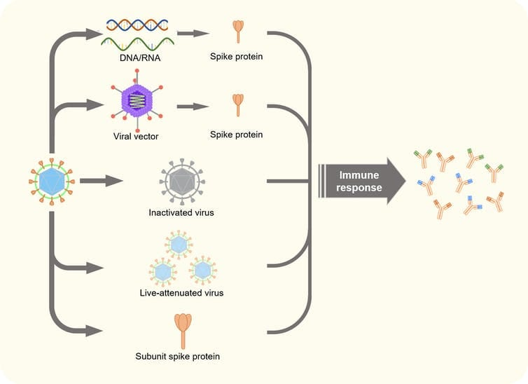 five technologies for covid vaccine