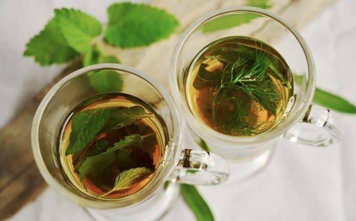herbal tea kadha