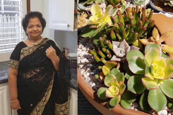 Preeti swarikar, succulents, charity, leprosy patients