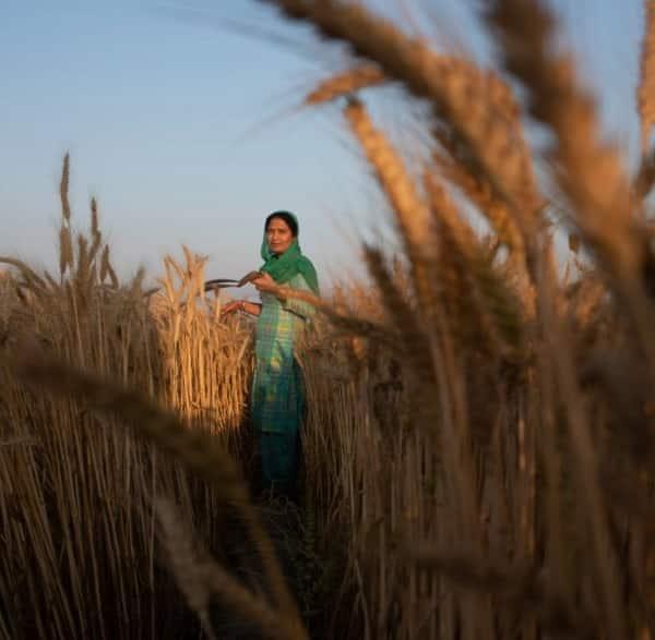 women farmer india