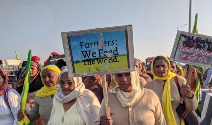 Indian farmers' strike continues in the shadow of COVID-19