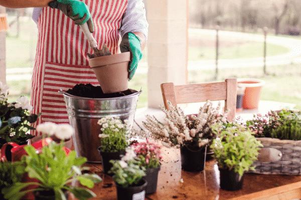 Creating your own home made garden