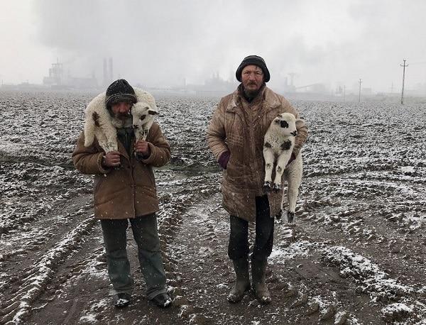 Transylvanian Shepherds