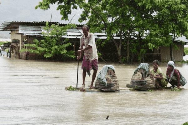 Assam floods. Source: Twitter
